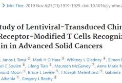 Mol Ther:慢病毒转导的CART-meso在晚期实体癌中的I期研究