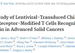 """Mol Ther:慢病毒转导的<font color=""""red"""">CART</font>-meso在晚期实体癌中的I期研究"""