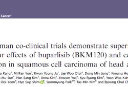 Br J Cancer:Buparlisib和西妥昔单抗联合治疗改善头颈部鳞状细胞癌患者预后