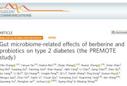 Nat Commun:小檗碱和益生菌对2型糖尿病患者的降血糖作用