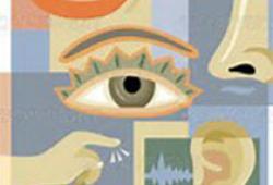 J Epidemiol Community Health:視力、聽力、牙齒脫落與社會交往的關系
