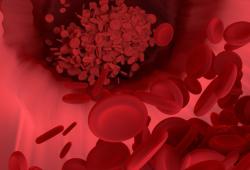 Circulation:免疫疗法引起心血管异常!PD-1何时跌下神坛?