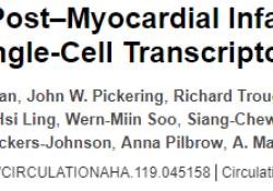 "Circulation:血浆蛋白质组学联合单细胞转录组学""排序""<font color=""red"">心</font><font color=""red"">梗</font>后心衰标志物"