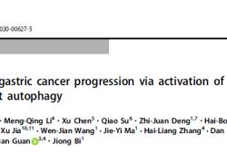 Cell Death Differ:DAPK3激活ULK1依赖性自噬作用抑制胃癌的发生发展