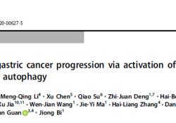 "Cell Death Differ:DAPK3激活ULK1依赖性<font color=""red"">自</font><font color=""red"">噬</font>作用抑制胃癌的发生发展"