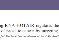 """Br J Cancer:LncRNA HOTAIR通过靶向hepaCAM促进<font color=""""red"""">前列</font><font color=""""red"""">腺</font><font color=""""red"""">癌</font>的<font color=""""red"""">侵袭</font>和转移"""