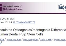 Int J Mol Sci:Pentraxin-3调控人牙髓干细胞的成骨/成牙分化和迁移