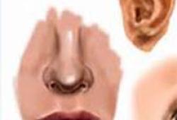 PLoS One:便秘可能与过敏性鼻炎相关