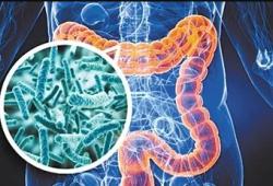 IBD: 炎症性肠病患者接受胃肠外科手术会持续降低微生物组的多样性