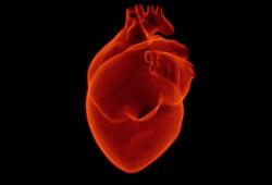 JACC:數百萬人數據顯示,男性更易得心梗,女性預后更差?