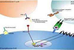 ACG 2020:相比于英夫利昔单抗,Vedolizumab显著改善与免疫治疗有关的腹泻