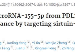 "<font color=""red"">J</font> Cell Physiol:PDLSCs的外泌体microRNA-<font color=""red"">155</font>-5p通过靶向sirtuin-<font color=""red"">1</font>调节慢性牙周炎的Th17/Treg平衡"