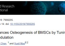 "Biomed Res Int:研究发现镁通过调整骨免疫调控增强BMSCs的<font color=""red"">成</font><font color=""red"">骨</font>作用"