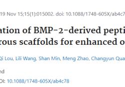 "Biomed Mater:3D打印支架偶联<font color=""red"">BMP</font>-<font color=""red"">2</font>衍生肽可增强成骨作用"