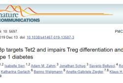 Nat Commun:miRNA142-3p靶向Tet2可损害1型糖尿病患者Treg的稳定性