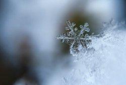 氣候因素影響新冠傳播?冬天疫情更嚴重?!