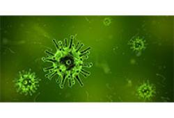 2020 IDSA指南:抗生素耐藥性革蘭氏陰性菌感染的治療