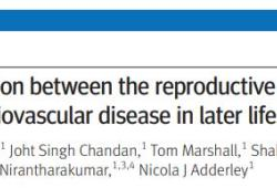 BMJ:生育因素與女性晚年心血管疾病風險