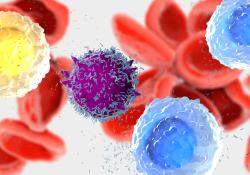 """最新研究:新型T细胞<font color=""""red"""">检测</font>比抗体<font color=""""red"""">检测</font>更准确!"""