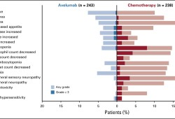 J Clin Oncol:III期 | 一线诱导化疗后Avelumab维持治疗对晚期胃癌患者预后的作用