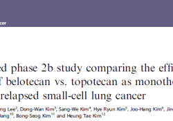 Br J Cancer:拓扑替康和贝洛替康在复发性小细胞肺癌单一疗法中的疗效和安全性比较