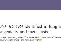 "Br J Cancer:新型CD63–BCAR4融合蛋白可促进肺腺癌的致<font color=""red"">瘤</font>性和转移"