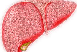 51年队列研究数据:轻度脂肪肝增加7成死亡风险!