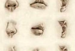 【盘点】鼻炎研究盘点(一)