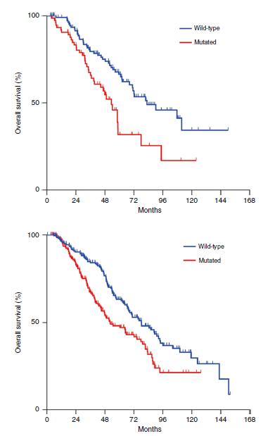 RAS突变对于早发性和晚发性结直肠癌肝转移切除患者总体生存期的影响