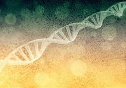"""礼来与Precision BioSciences合作进行<font color=""""red"""">基因</font><font color=""""red"""">组</font>编辑研究"""