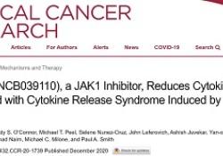 """Clin Cancer Res:<font color=""""red"""">JAK</font>1<font color=""""red"""">抑制</font><font color=""""red"""">剂</font>Itacitinib可有效预防CAR T细胞疗法引发的细胞因子释放综合征"""
