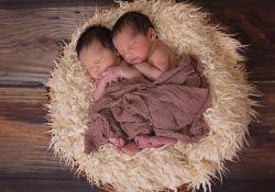 """Obstet Gynecol:双胎妊娠是否<font color=""""red"""">增加</font>胎盘植入性疾病<font color=""""red"""">发生</font><font color=""""red"""">风险</font>?"""