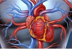 2020年心血管领域研究进展深度盘点丨梅斯述评