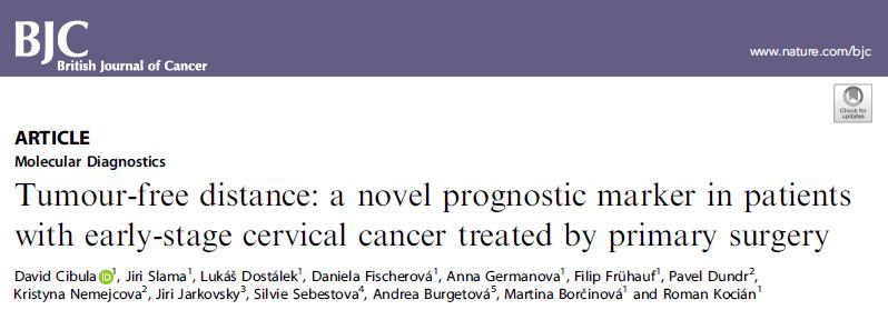 Br J Cancer:无肿瘤距离(TFD):早期宫颈癌患者的新预后指标
