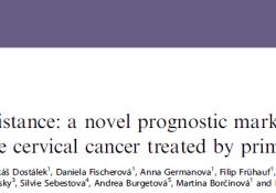 "Br J Cancer:无肿瘤距离(TFD):早期<font color=""red"">宫颈</font><font color=""red"">癌</font>患者的新预后指标"