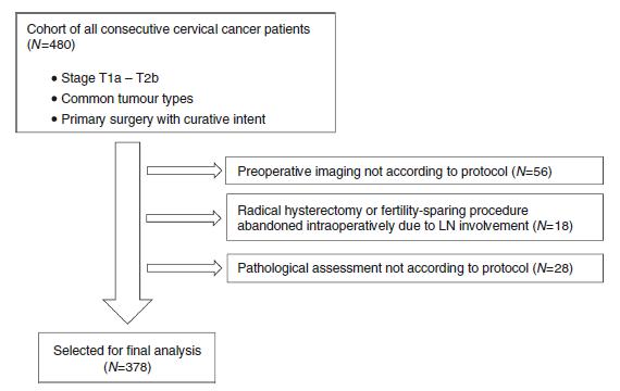 无肿瘤距离(TFD):早期宫颈癌患者的新预后指标