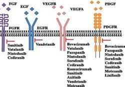 "NMPA批准BYVASDA(贝伐单抗<font color=""red"">生物</font>仿<font color=""red"">制药</font>)治疗复发性胶质母细胞瘤"