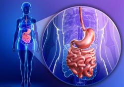 IBD:血清白蛋白的早期变化可预测溃疡性结肠炎患者开始抗TNF治疗的临床和内镜结果