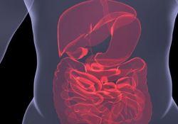 "BMJ Gastroenterology:粪便<font color=""red"">菌</font>群移植治疗中重度溃疡性结<font color=""red"">肠炎</font>后疾病复发情况及再次行粪便<font color=""red"">菌</font>群移植的疗效"