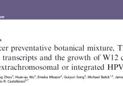 Br J Cancer:新型植物化学混合物TriCurin抑制宫颈癌细胞的生长