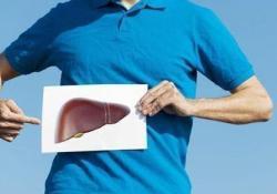 "Dig Liver Dis:左旋肉碱补充剂可减轻蛋氨酸和胆碱缺乏饮食喂养的小鼠模型的<font color=""red"">NAFLD</font>进展和心脏功能障碍"