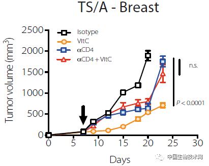 Science: 高剂量的维生素C可以抗癌?