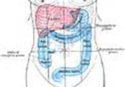 "Gastroenterology:腺瘤及<font color=""red"">息肉</font>切除后长期结直肠癌风险研究"