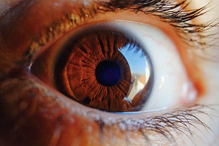 Diabet Med:視網膜成像聯合這幾種系統風險因素,助力糖尿病視網膜病變篩查