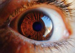 "Diabet Med:<font color=""red"">视网膜</font>成像联合这几种系统风险因素,助力糖尿病<font color=""red"">视网膜</font>病变筛查"