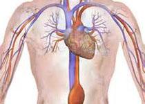 JACC:多种新生物标志物可预测心衰伴保留型射血分数患者的预后