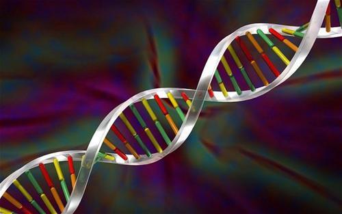 JCC:MicroRNA23a在克罗恩病中的过度表达增加了抗TNF的敏感性并保护了上皮屏障