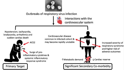 Eur Heart J:新冠病毒对心血管或有长期影响