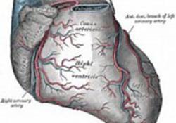 Heart:心源性猝死患者心电图与心肌纤维化的关系