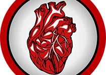 Cell Death Dis:PHB2缺乏会损害心脏脂肪酸氧化反应并导致心力衰竭